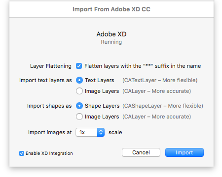 Adobe XD Import Options